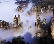 张家界国家森林公园管理处天气预报
